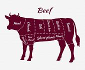 Постер, плакат: Scheme of Beef Cuts for Steak and Roast