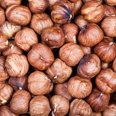 Постер, плакат: Many Dried Uncooked Hazelnuts