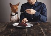 ������, ������: Man Shares Piece Of Steak For Lovely Dog