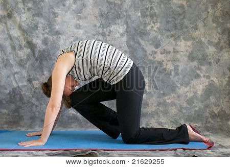Woman Doing Yoga Posture Marjaryasana Variation Or Strong Cat Pose Right
