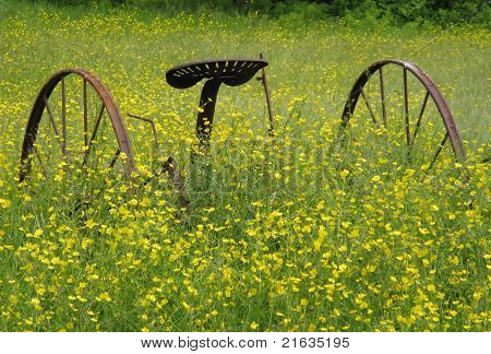 wheels in field