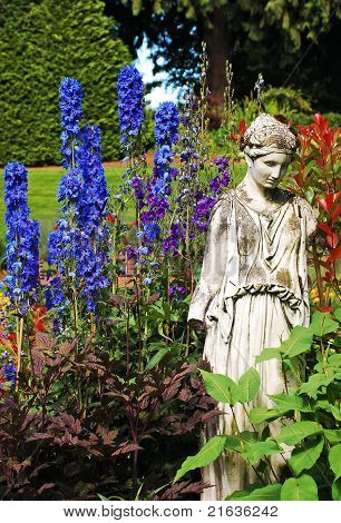 Blue delphinium garden