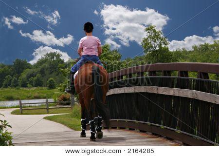 Mid-Age Female Horse Ridder