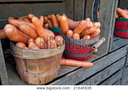carrots in bushel baskets