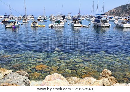 Boats in Catalina Harbor