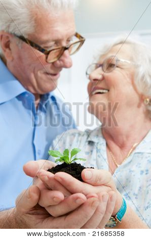 Old retired couple holding a fresh plant in their hands, symbol of good bank investments for the retirement