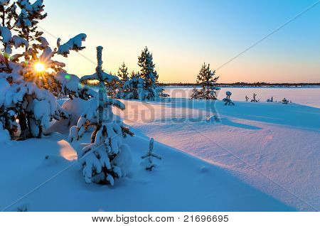 Sunset in West Siberia