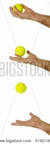 Sporting Equipment: Throwing A Tennis Ball.