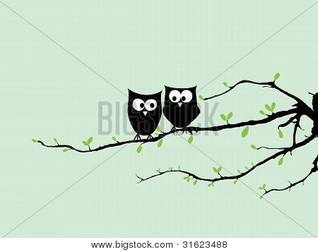 Happy Owls On Tree