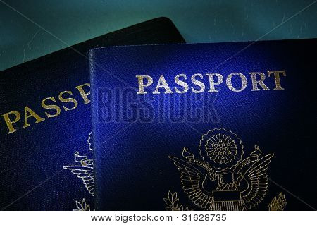 Government Passports