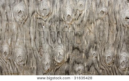 Knotty Wood Background