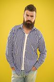Having Some Doubts. Beard Fashion And Barber Concept. Man Bearded Hipster Beard Yellow Background. B poster