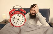 Tips For Becoming An Early Riser. Man Bearded Hipster Sleepy Face In Bed With Alarm Clock. Problem W poster