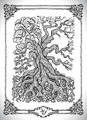 Symbol Of Four Calendar Year Seasons And Old Tree. Vector Line Art Mystic Illustration. Engraved Dra poster