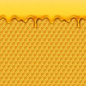 Liquid Honey Pattern. Bee Honeycombs And Honey Drops Syrup Natural Yellow Product Seamless Vector Ba poster