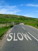 Slow Sign On An English Countryside Road. poster