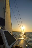 picture of sail-boats  - Sailing as the sunsets on the ocean - JPG