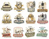 Equestrian Sport Vector Badges Of Horse Race, Polo And Riding School Design. Jockey, Racehorse And S poster