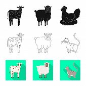 Vector Design Of Breeding And Kitchen Logo. Collection Of Breeding And Organic Stock Symbol For Web. poster