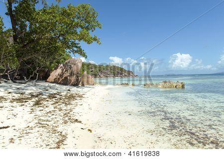 Tropical Sand Beach On Seychelles Islands, Praslin, Anse Lazio