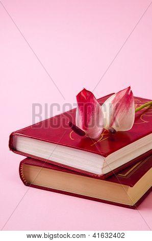 Red Anthurium On Books