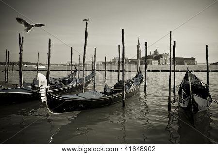 Gondole In Venice