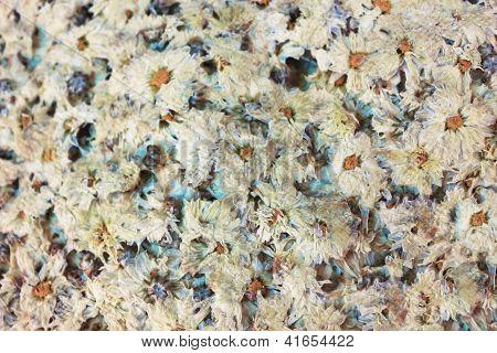 dried chrysanthemum tea in the market