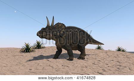 diceraptor on sand terrain in desert