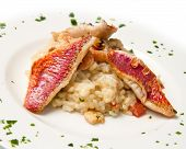 picture of mullet  - white dish with rice and red mullet fillet - JPG