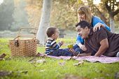 picture of three life  - Happy Young Mixed Race Ethnic Family Having a Picnic In The Park - JPG