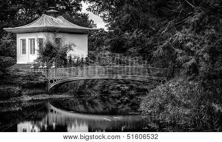 Chinese Garden  Black & White..