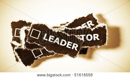 Business Career As A Leader