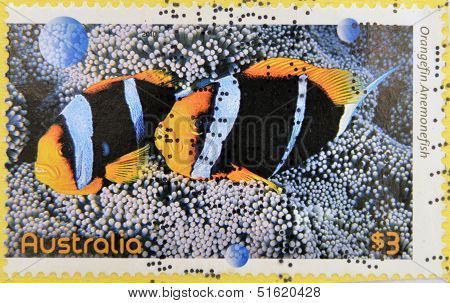 A stamp printed in Australia dedicated to fishes of the reef shows orangefin anemonefish