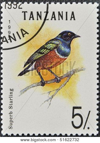 A stamp printed in Tanzania shows superb starling