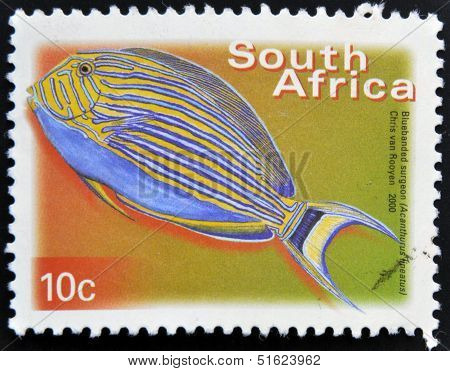 A stamp printed in RSA shows bluebanded surgeon Acanthurus lineatus