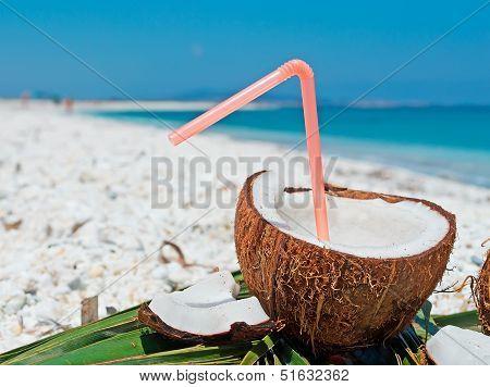 Drinking Coconut