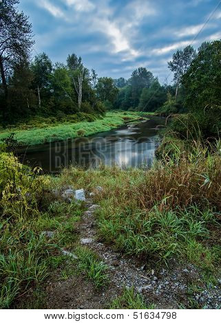 Green Trees With Winding River