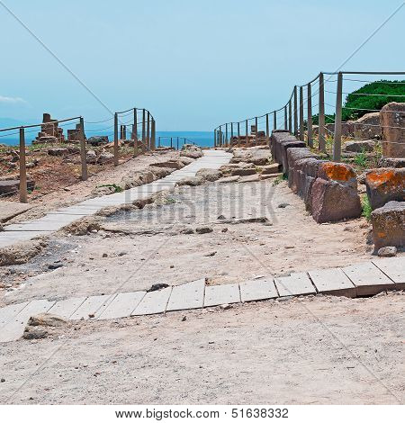 Wooden Path In Tharros