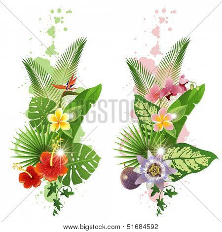 Bright tropical leafs and flowers