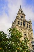 La Giralda bell tower in Seville with an orange