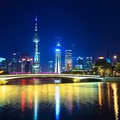 Charming Night In Shanghai