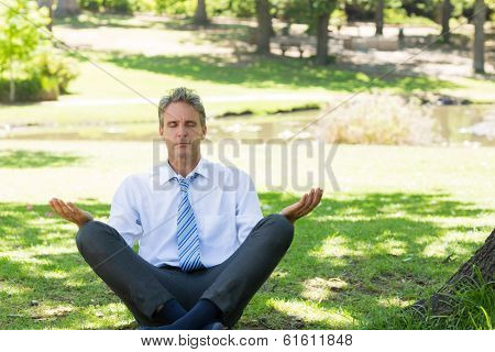 Relaxed mature businessman meditating on grass in park