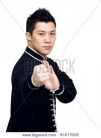 Asia man with martial art posture
