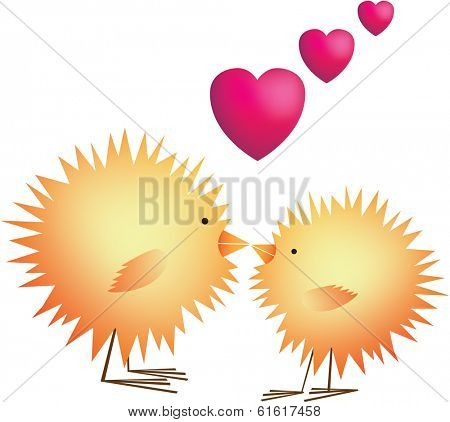 love hearts cute chicks kissing on white background