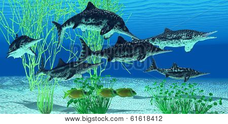 Stenopterygius Icthyosaur