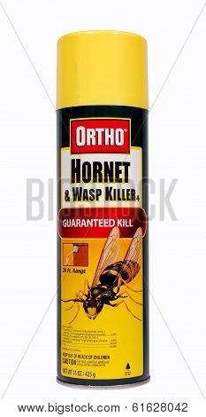 Hornet Spray