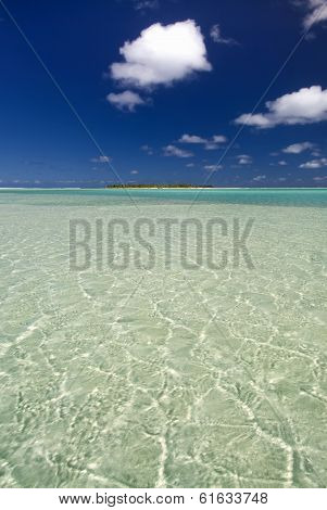 Sandy, shallow, tropical water with palm tree island in the distance