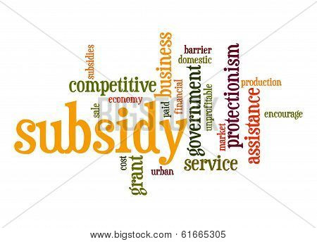 Subsidy Word Cloud