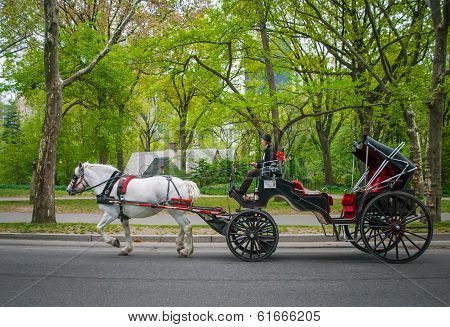 Carriage In Park