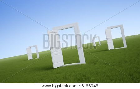 White doors in a field of grass